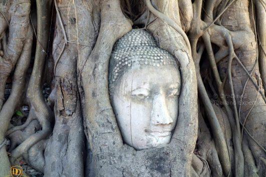 Central Thailand Tours