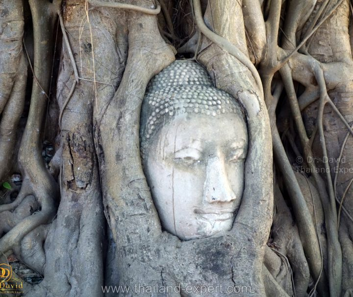 Bangkok Day Tours Archives - Thailand - Tip Top Travel and